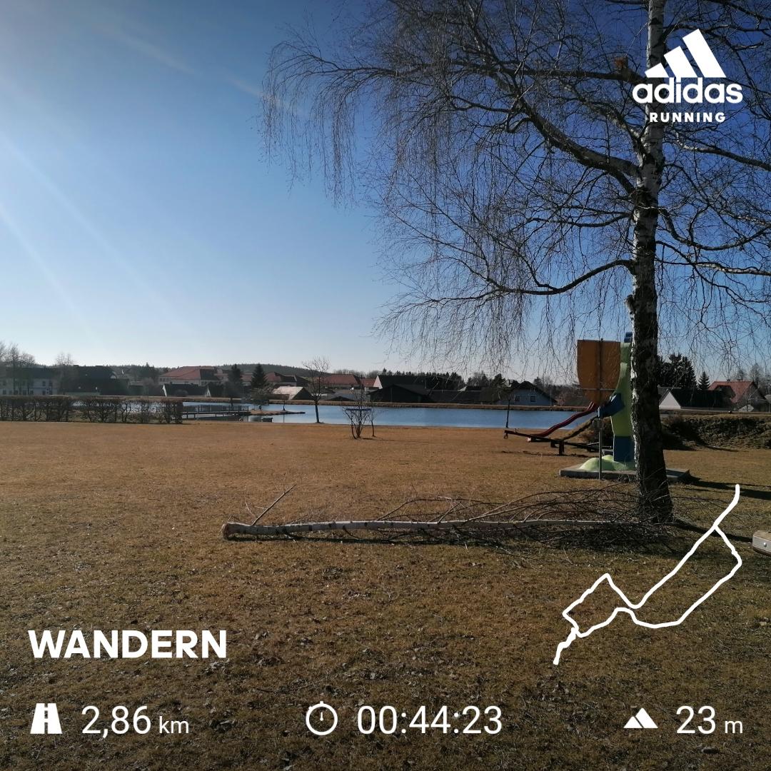 1351,8 km Bewegung im Freien